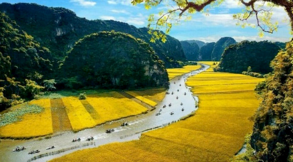 Le khai mac Nam Du lich Quoc gia 2020 Hoa Lu Ninh Binh se tam hoan vi dich viem duong ho hap cap do chung moi cua vi rut corona